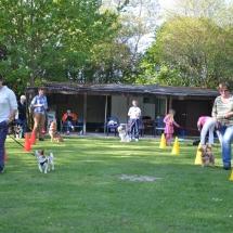 Hundeplatz Homepage 066